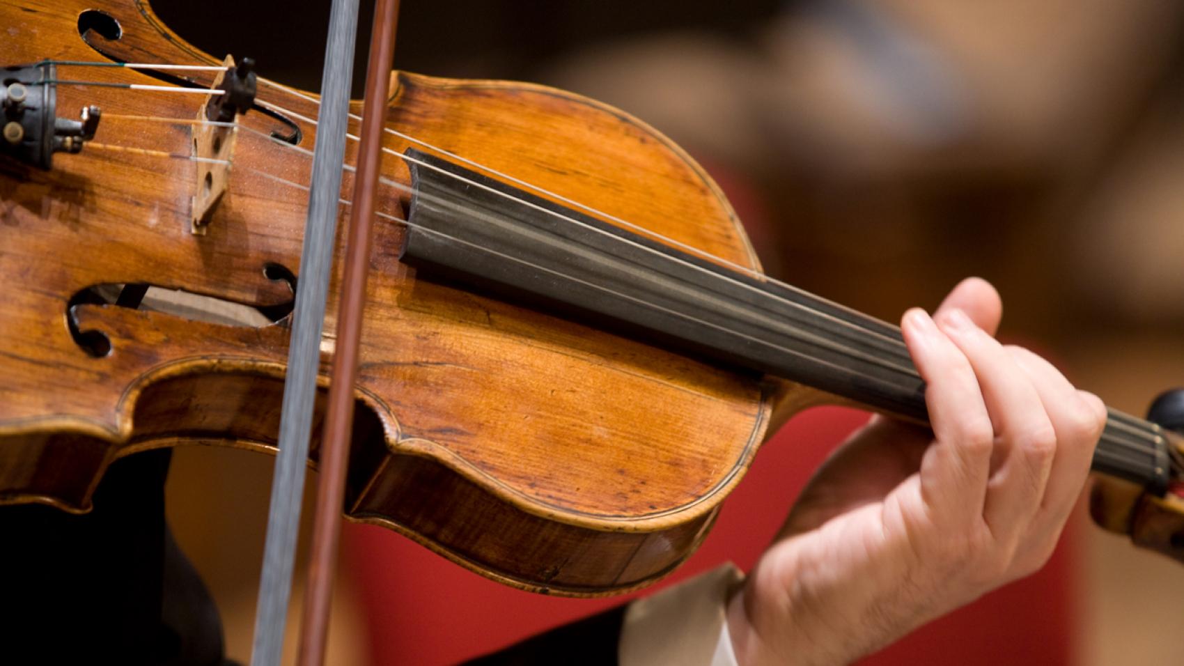 Aanvoerder altviool (63%) - Nederlands Kamerorkest