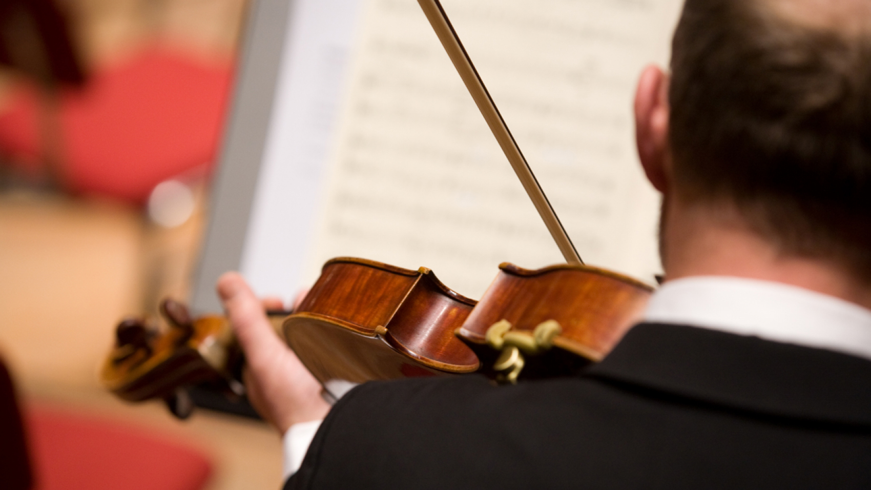 Aanvoerder altviool - Nederlands Philharmonisch Orkest