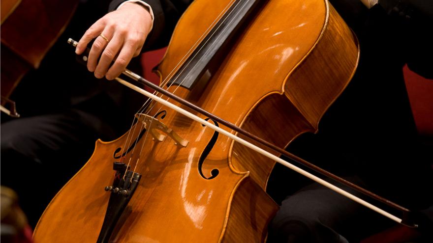 Aanvoerder cello (65%) | 2 vacatures - Nederlands Philharmonisch Orkest