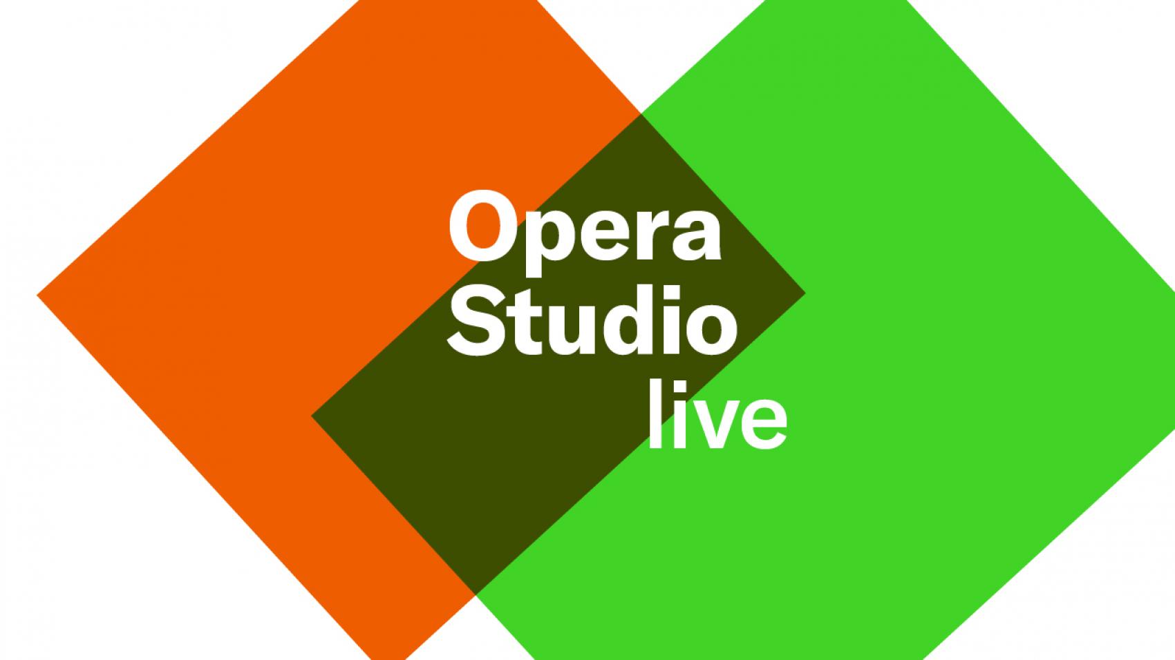 Opera Studio vanuit de NedPhO-Koepel