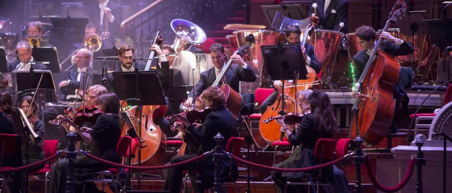 Workshop met concert