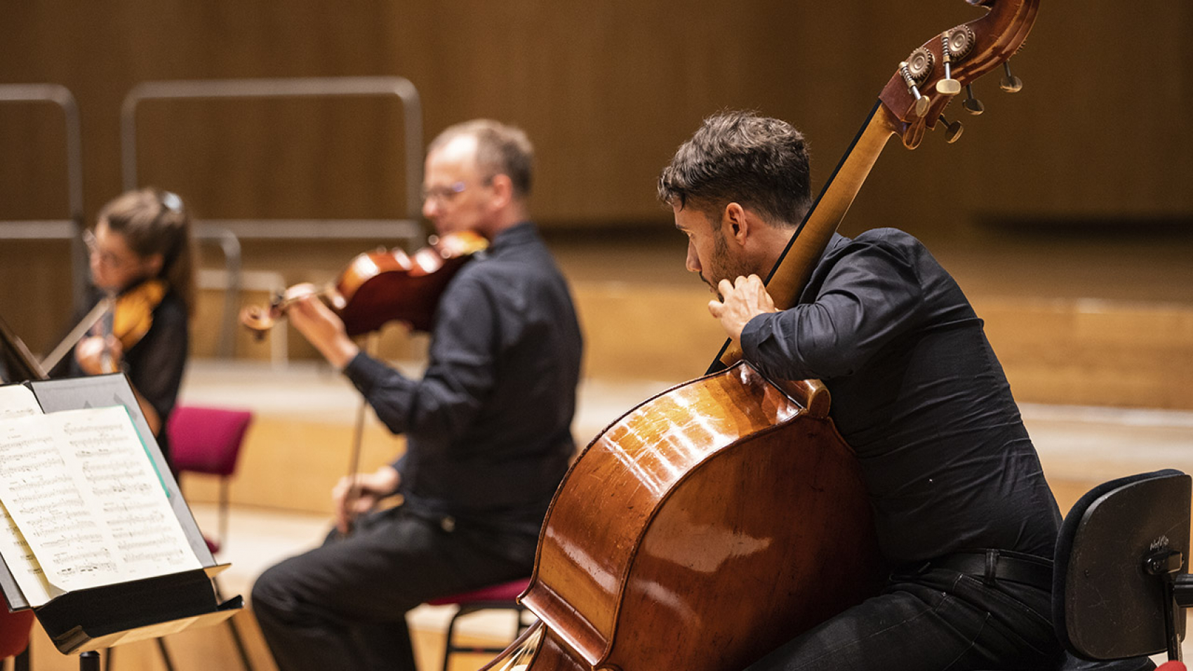 Koepel concert: double bass