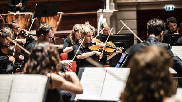 Nederlands Kamerorkest
