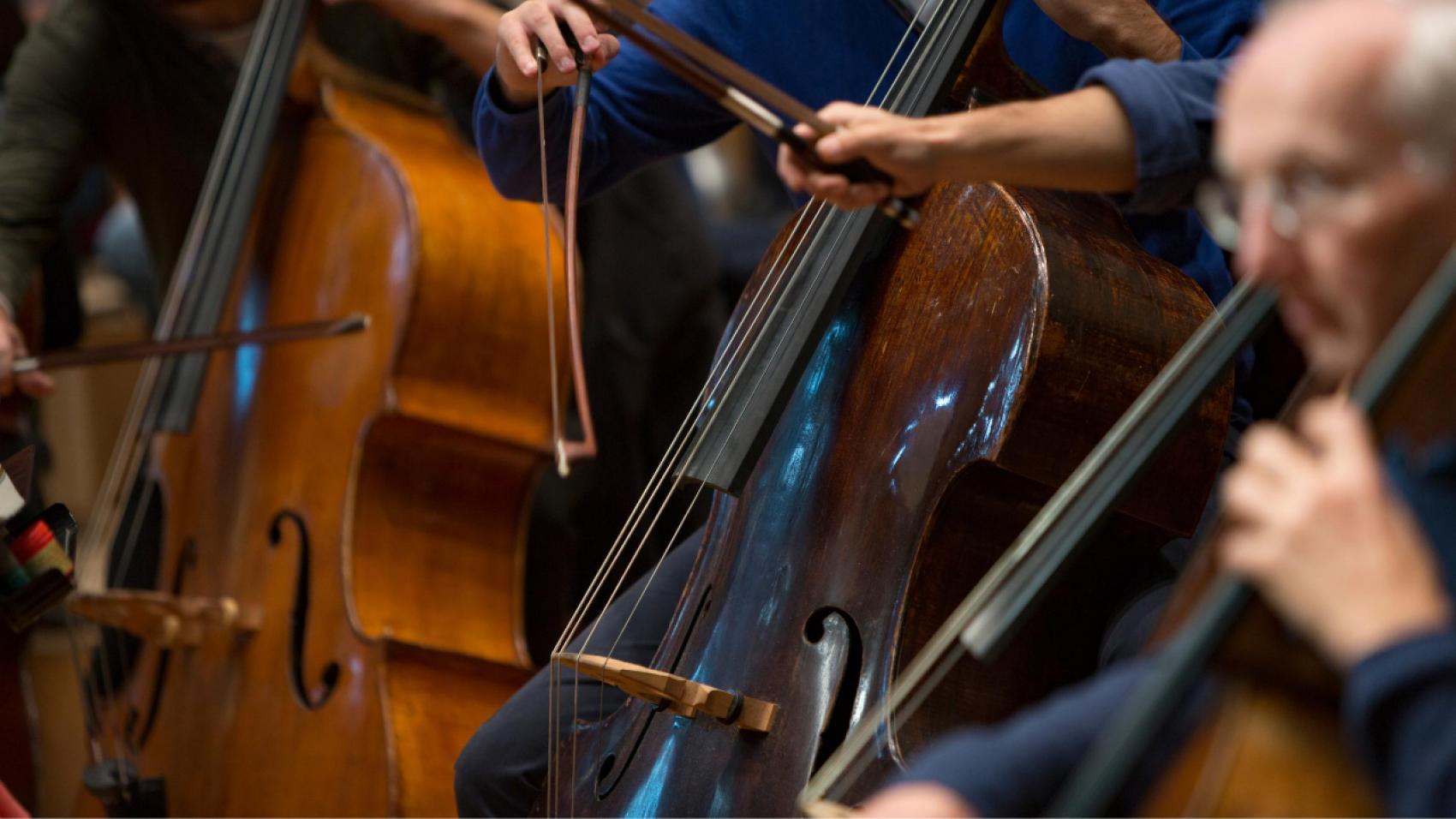 Plaatsvervangend aanvoerder contrabas (85%) - Nederlands Philharmonisch Orkest